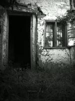 Door... by Berti18