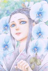 Blue Phalaenopsis by Calur