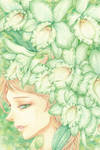 Green Dendrobium by Calur