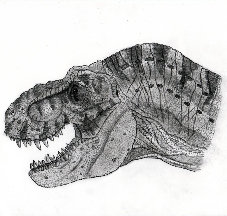 How To Draw Jurassic Park T Rex Head