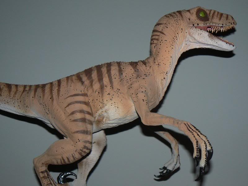 JP Velociraptor Horizon model by yankeetrex on DeviantArt