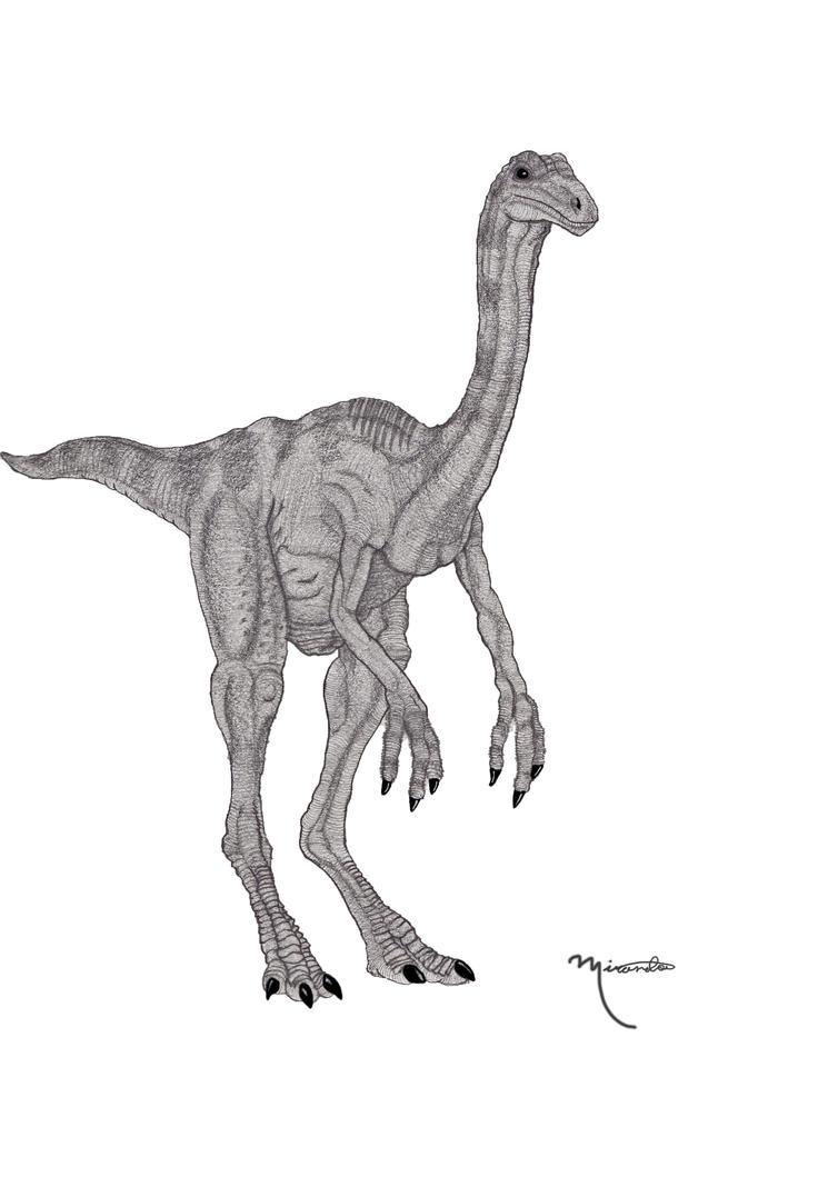 Jurassic_Park_Gallimimus______by_yankeet