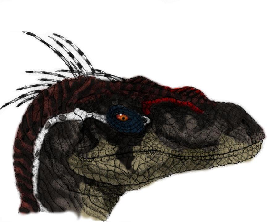 http://fc05.deviantart.net/fs70/i/2011/026/0/0/jp3_velociraptor_color_by_yankeetrex-d382s32.jpg