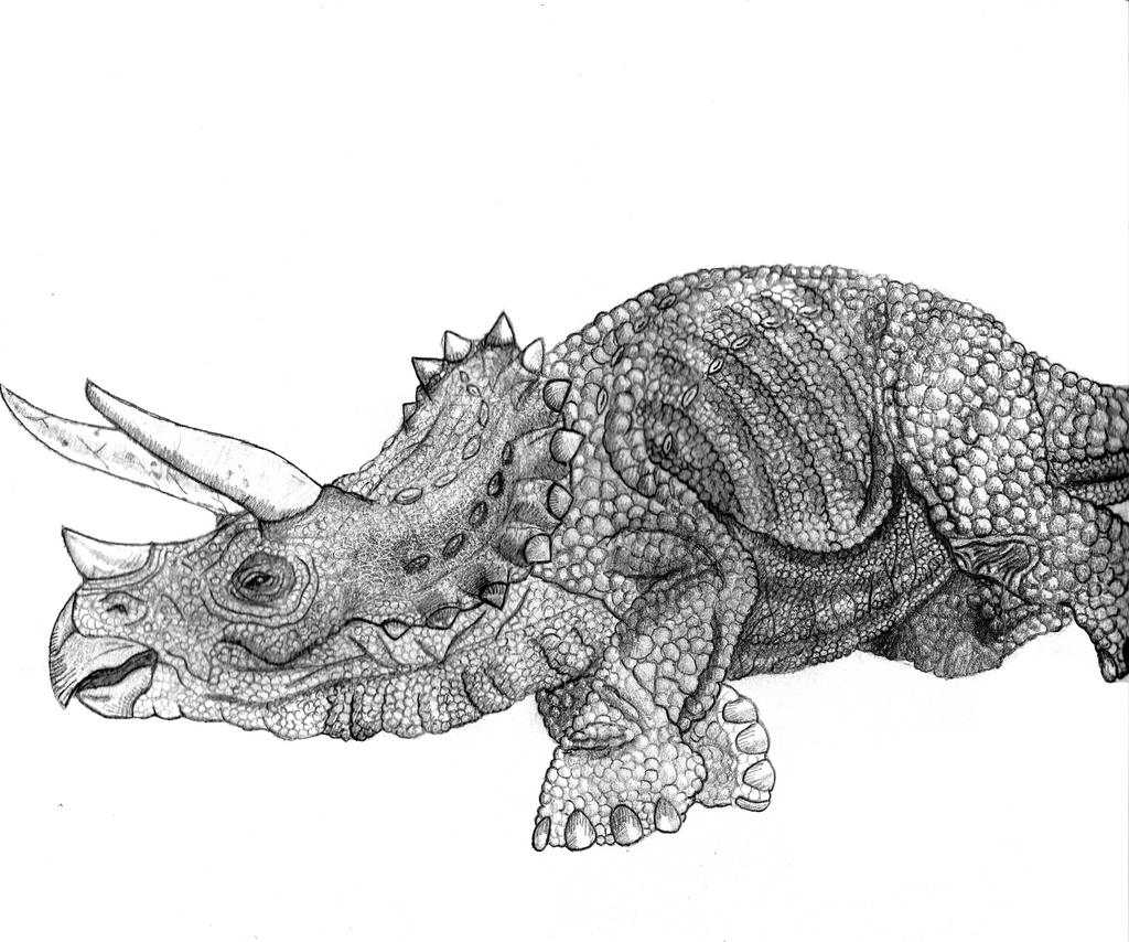 Jurassic Park Sick Triceratops By Yankeetrex On DeviantArt