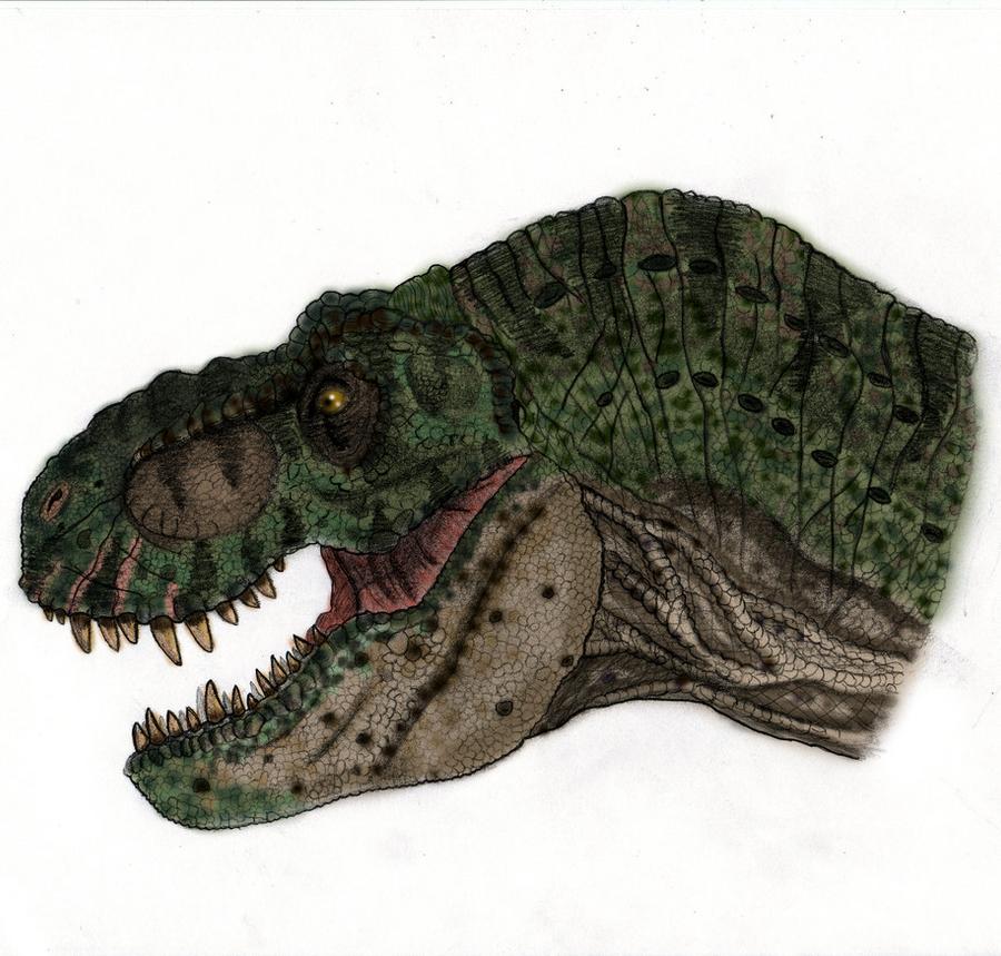 jurassic_park_t_rex_by_yankeetrex-d38rvj
