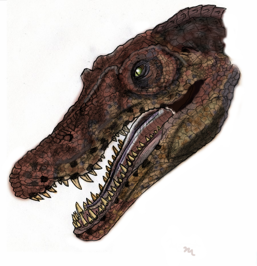 jurassic_park_spinosaurus_by_yankeetrex-