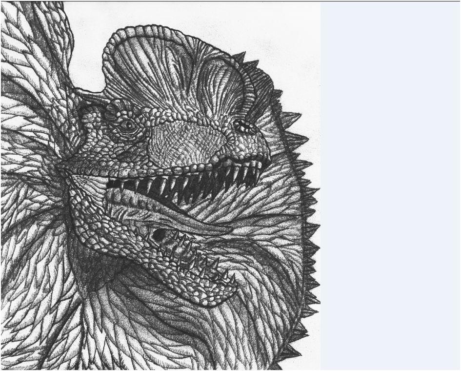 dilophosaurus drawing for contestDilophosaurus Drawing