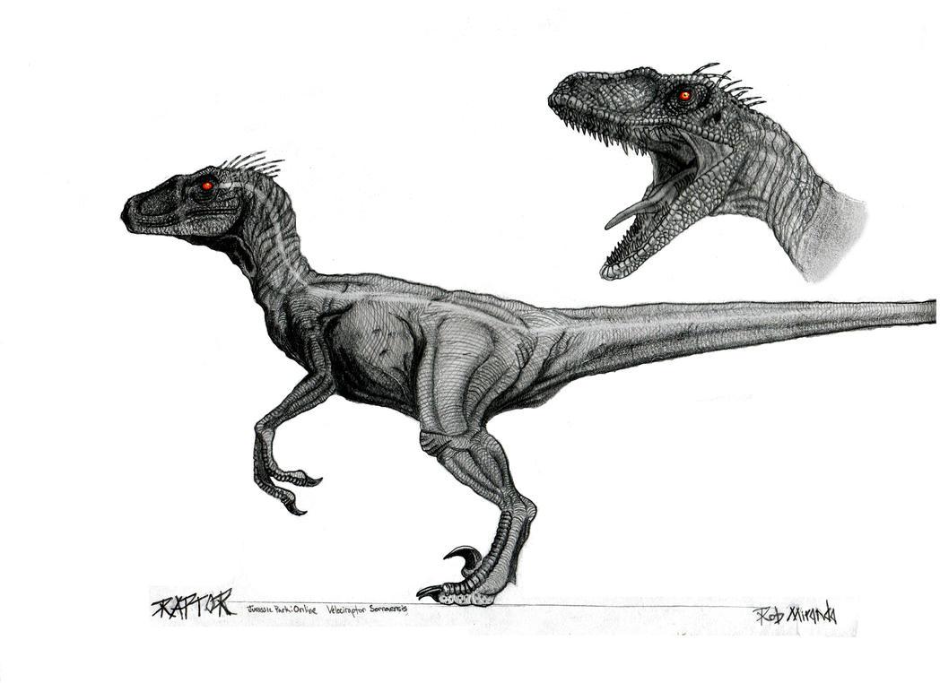 Male Velociraptor Concept Art By Yankeetrex On Deviantart