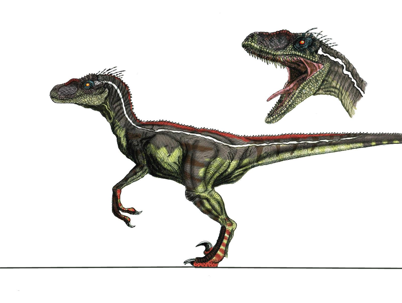 JP3 Male Velociraptor