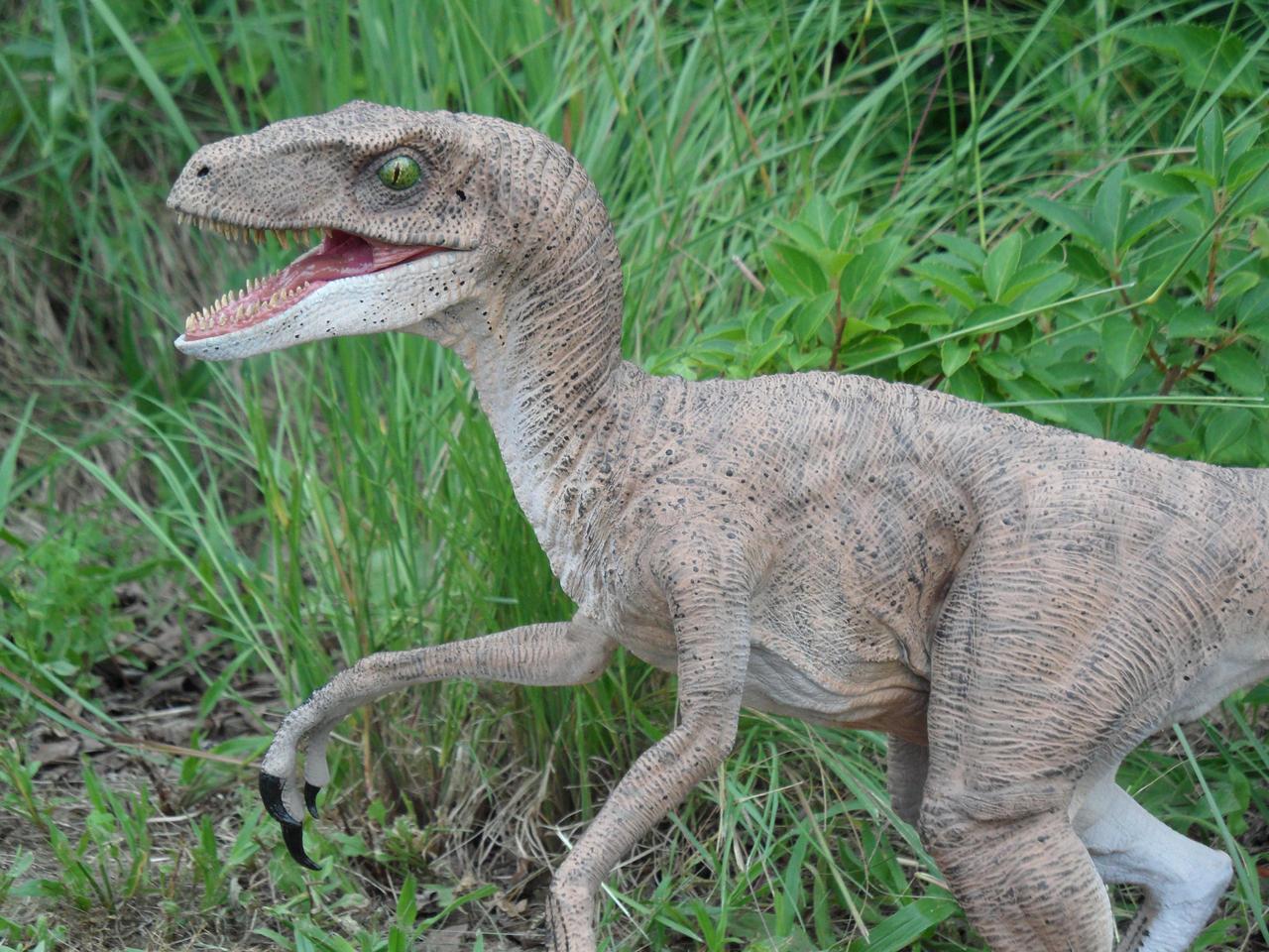 duel links how to get rex raptor
