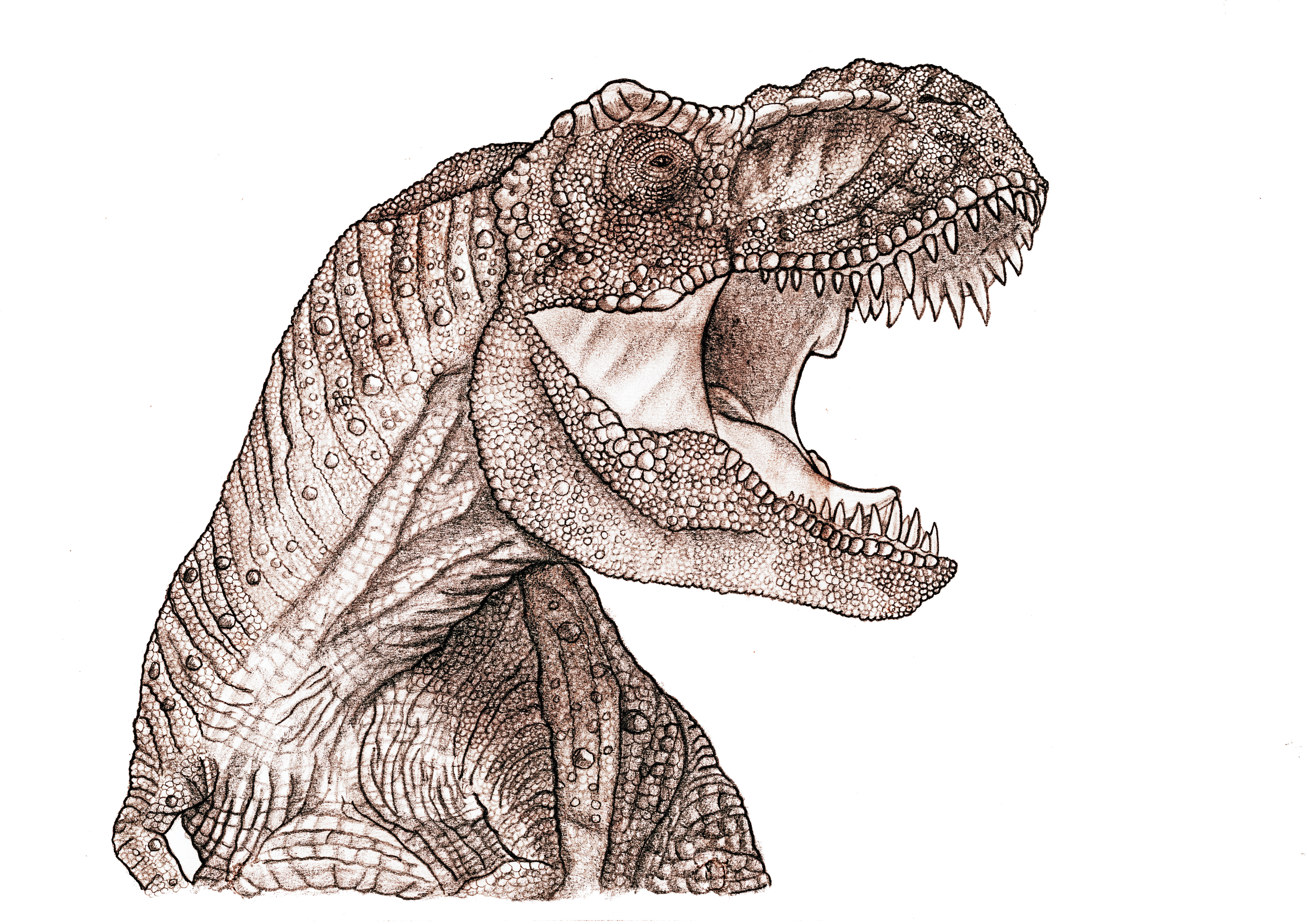 Jurassic Park Tyrannosaurus Roar by yankeetrex