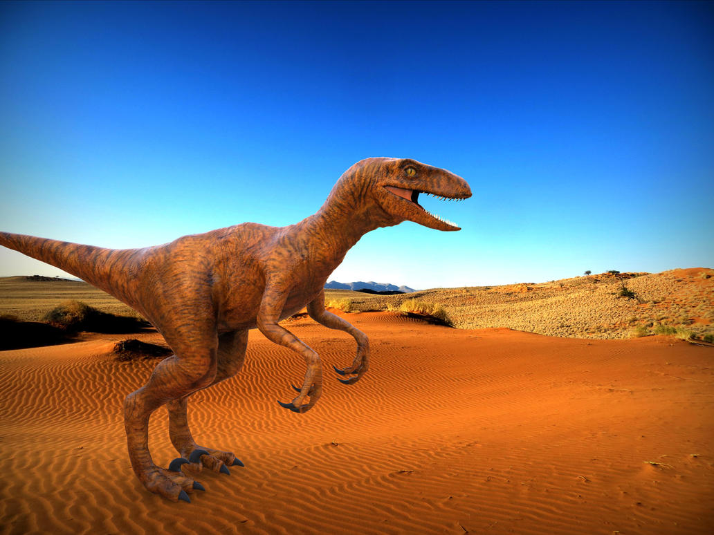 Velociraptor Desert by yankeetrex
