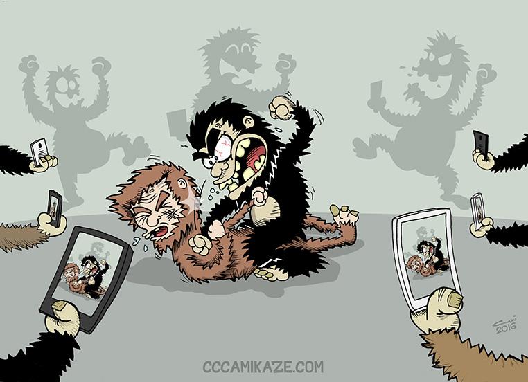 Monkey fight! by Camikaze