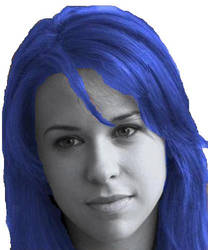 Lacey Chabert as Raven