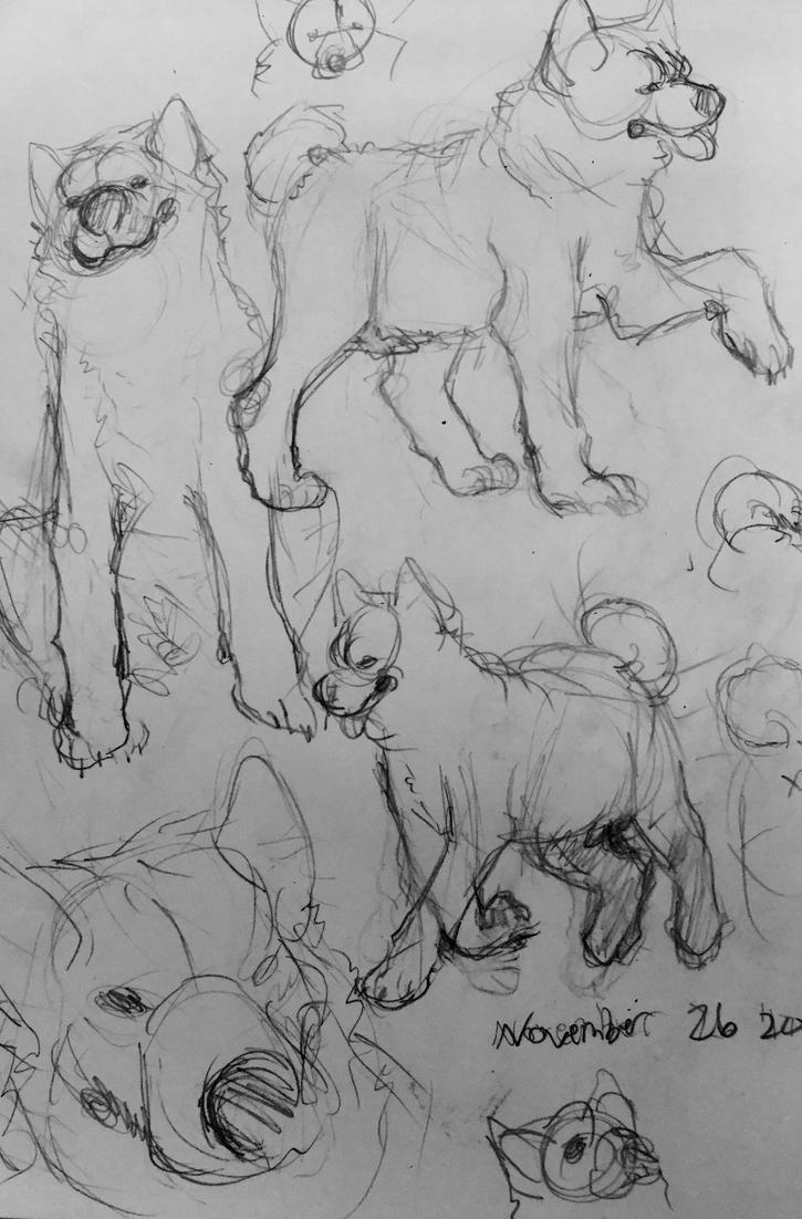 Doggy Doodles by Muuluzi