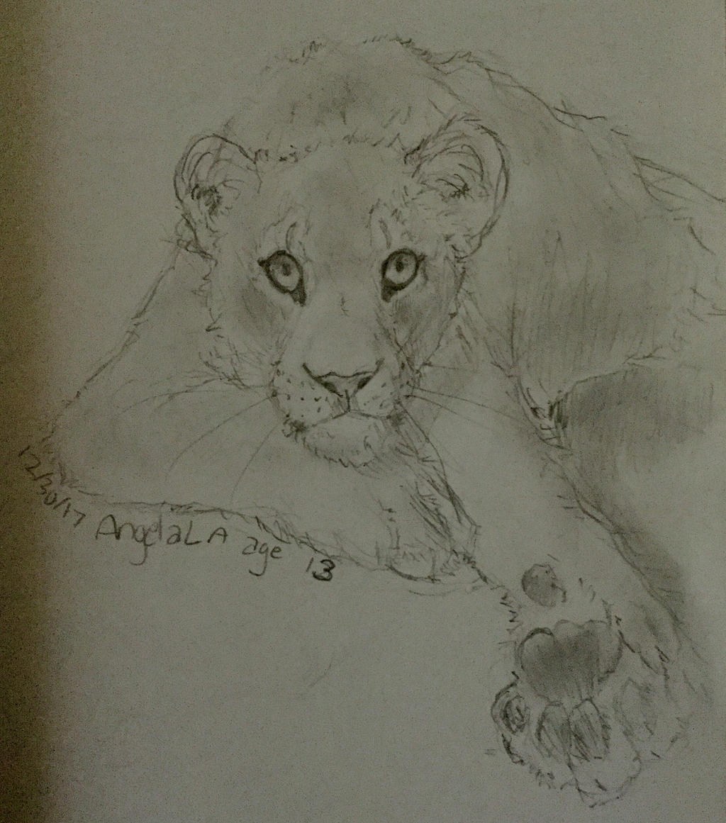 Lioness by Muuluzi