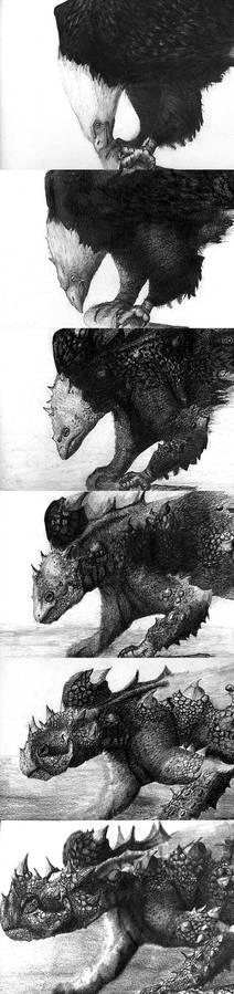 Animal morph