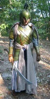 Lord of the Rings 2nd Age Elf Armor