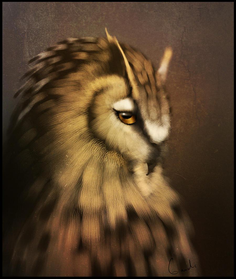 Owl by GaudiBuendia