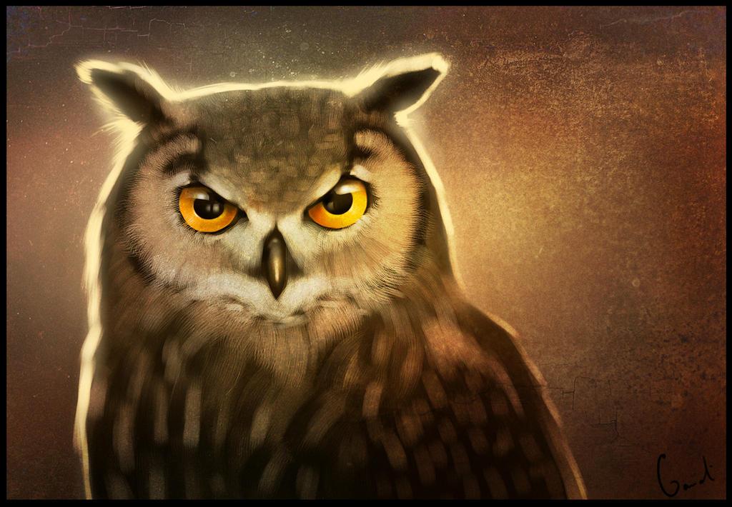 Owl2 by GaudiBuendia