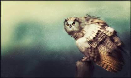 Big Owl by GaudiBuendia