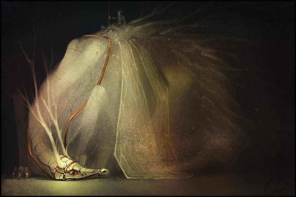 Wooden dragon by GaudiBuendia