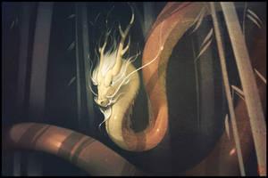 The Chinese dragon by GaudiBuendia