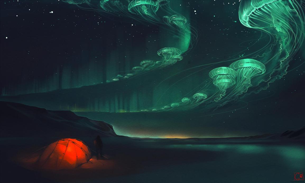 aurora polaris by GaudiBuendia