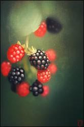 blackberries by GaudiBuendia