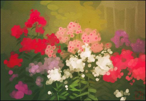 Plein Air.Mom's garden