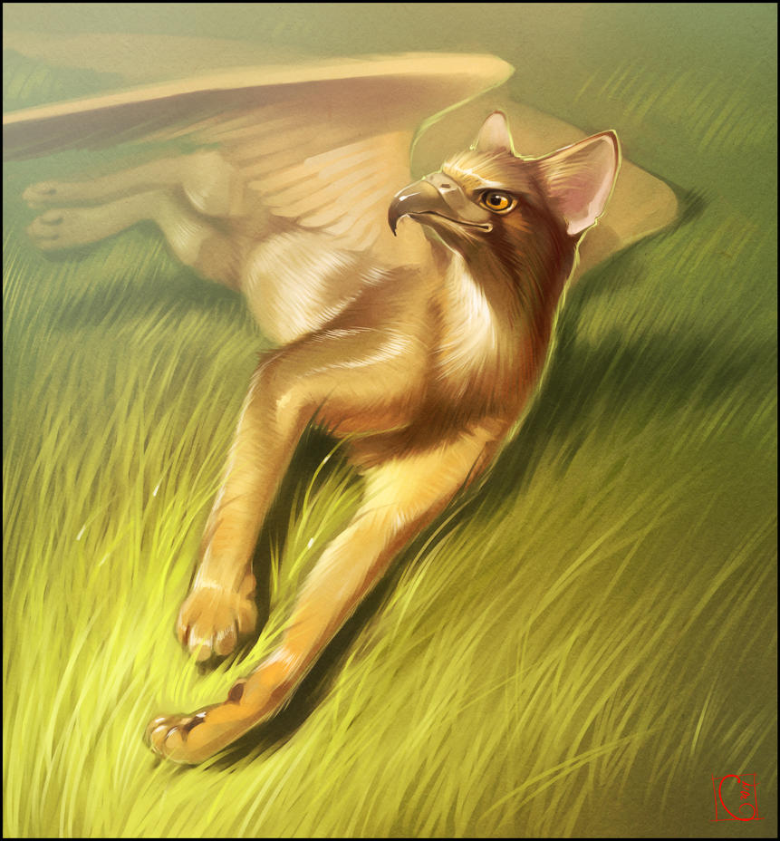 Abyssinian griffin by gaudibuendia on deviantart for The griffin
