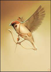 sparrow archer