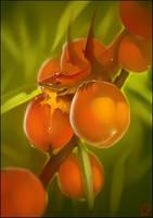 Peach dragon