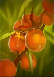 Peach dragon by GaudiBuendia