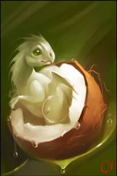 Coconut dragon