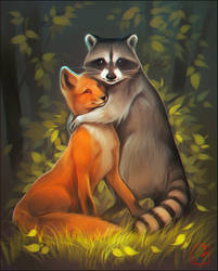 Raccoon and fox
