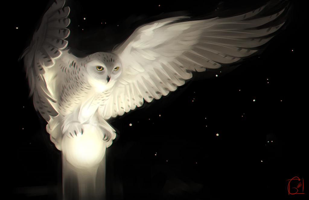 Owl and the moon by GaudiBuendia on DeviantArt