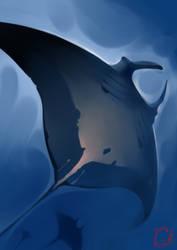 Manta ray by GaudiBuendia