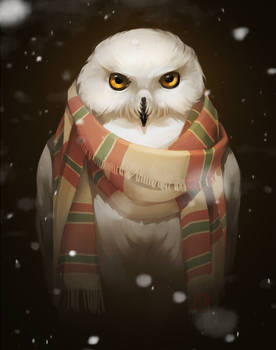 owl in scarf