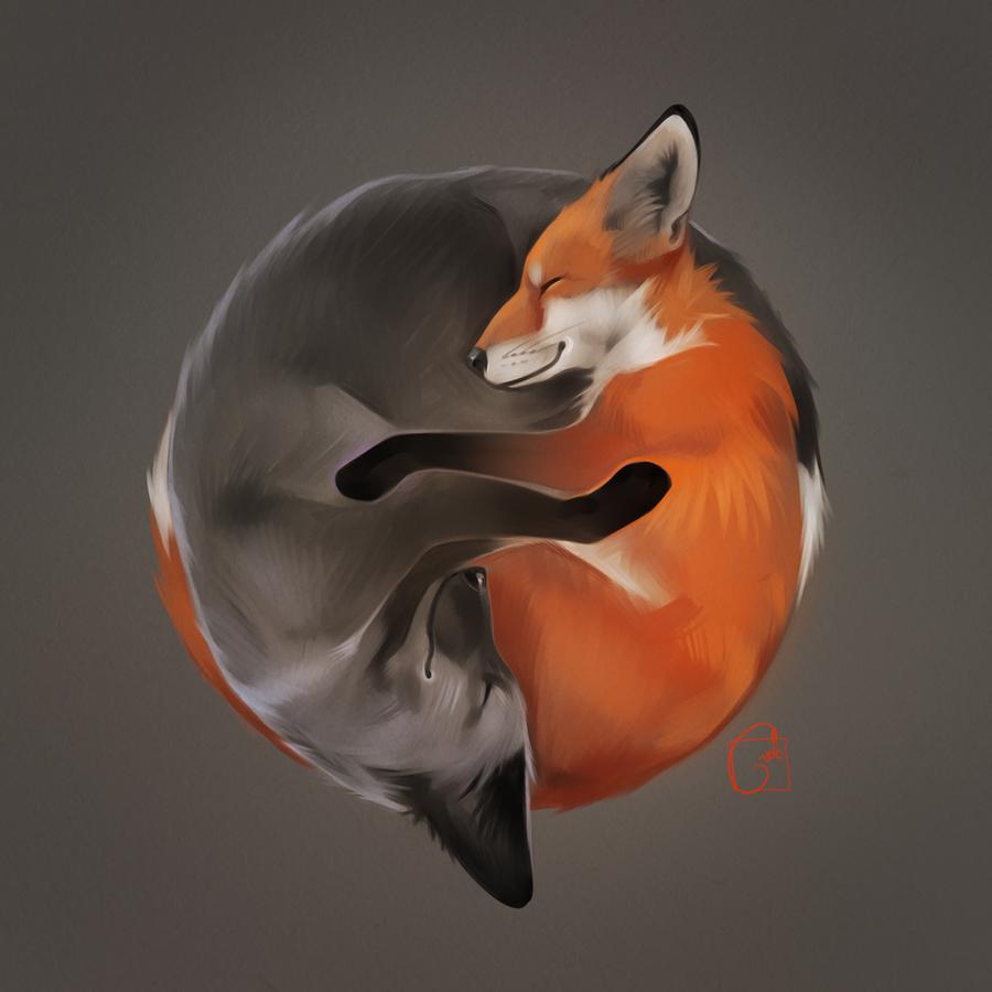 foxes by GaudiBuendia