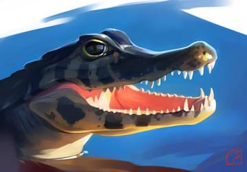 crocodile by GaudiBuendia