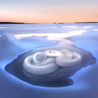 Winter snake