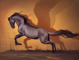 Pegasus shadow