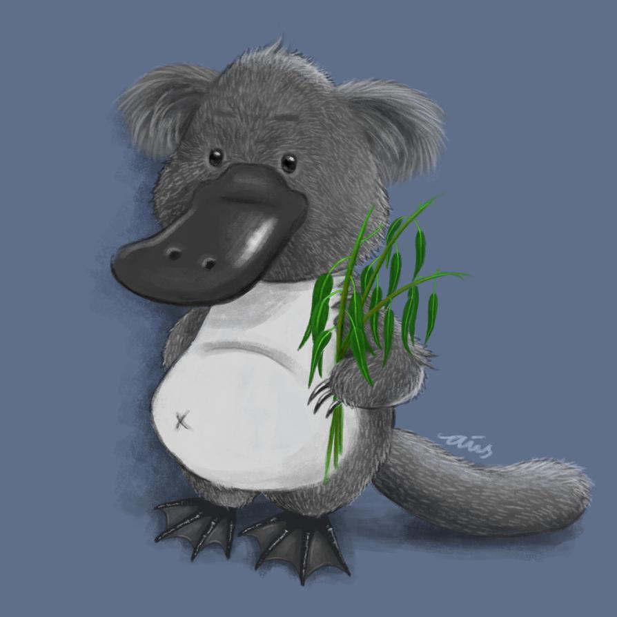 Koalapus by aiisblueapple