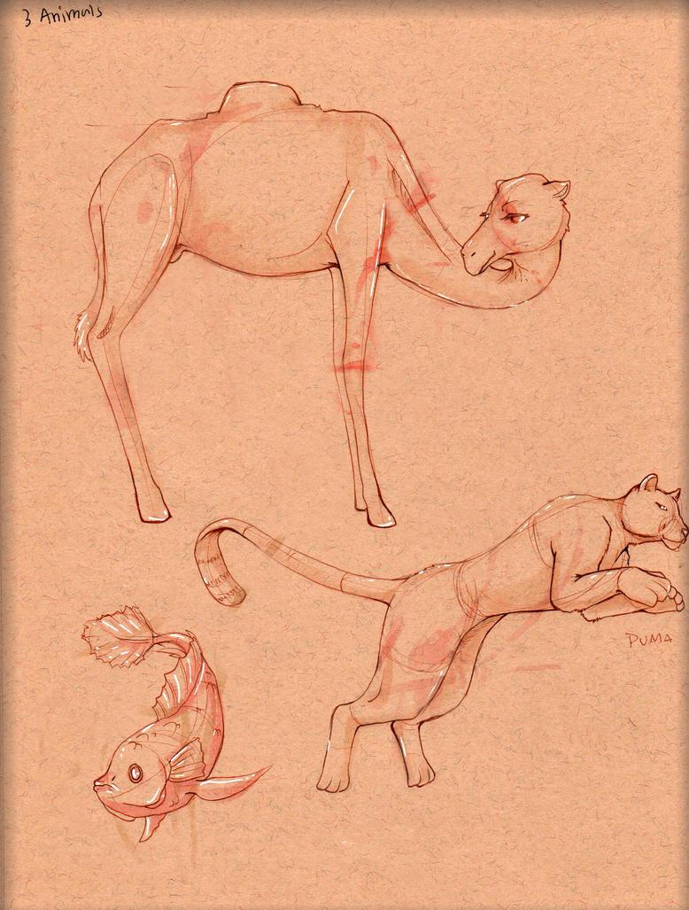 Animal Study 1 by LordMaru4U