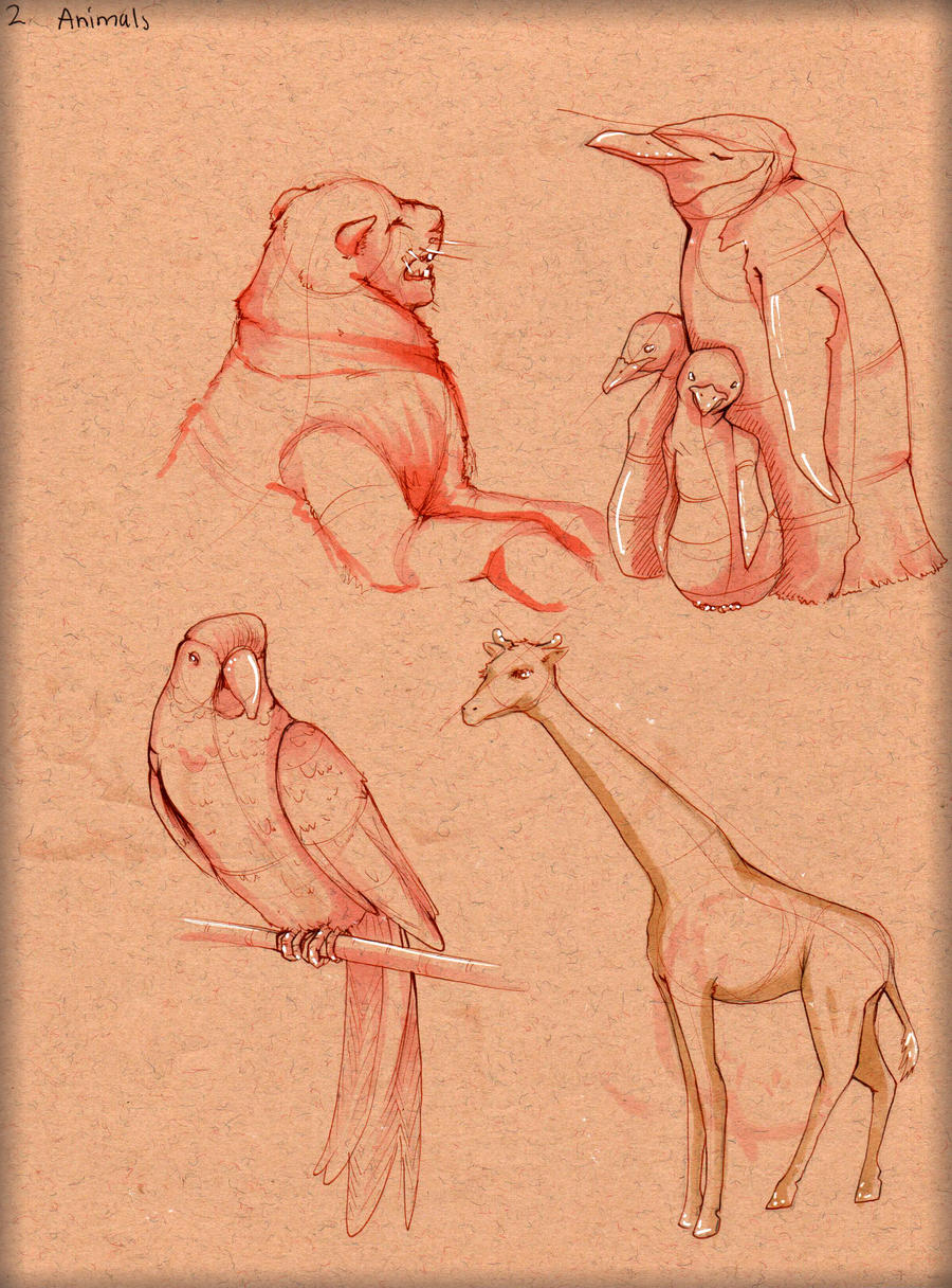 Animal Study 2 by LordMaru4U