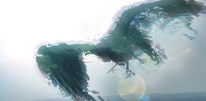 Eagle by TurinAnglachel
