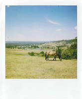 Polaroid with a view by Little-miss-sponge