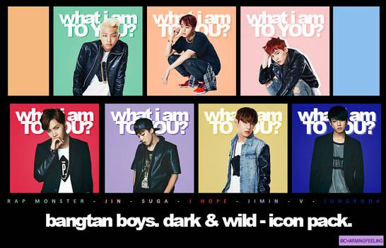 BTS DARK AND WILD - ICON PACK.
