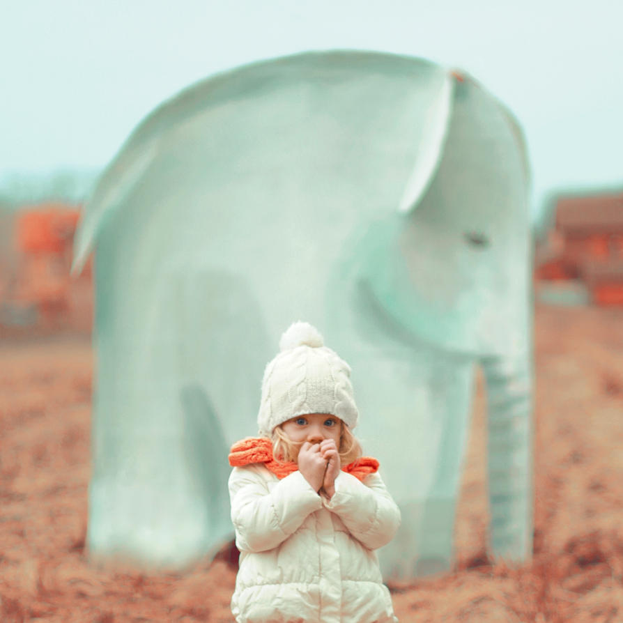 elephant by AnnaGrazhdankina